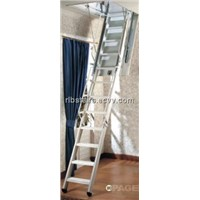 Telescopic Ladder (TL03)