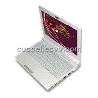 Mini notebook with 10.2-inch WSVGA 16:10 wide screen (TD1003 )
