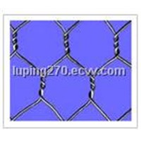 Hexagonal Wire Mesh (01)
