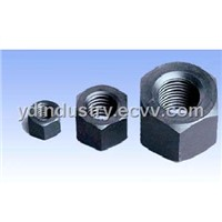 ASTM A194 2H Hex Nut
