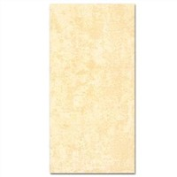 Ceramic Wall Tile - 300x600mm