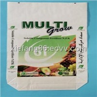 Color Printing Bag (CGC-001)