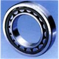 Cylindrical Roller Bearing (NU 1011)