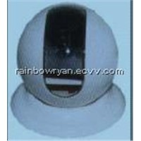 Dome Camera with Private Housing