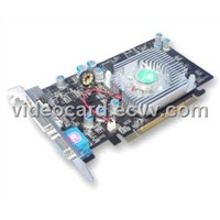 Graphics Card (GF6600 256MB DDR Video Card)