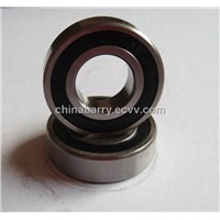 Steel Bearing (CB6204)