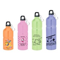 sports bottle/what bottle/stainless steel bottle