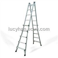 Little Giant Aluminum Ladders (ANIA-MT22)