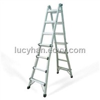 Little Giant Ladders (ANI-MT22)