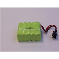 Battery Pack (6)