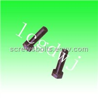 Hex Bolts (22)