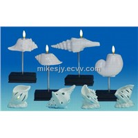 Ceramic sea shell candle holders series