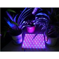 LED Plant Growing Light Red&Blue