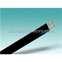 Electrical Wire & Cable (UL SPT)