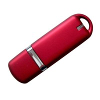 USB Flash Disk (U-010)
