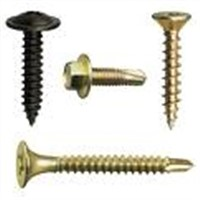 Self Tapping Screws (YJS-006)