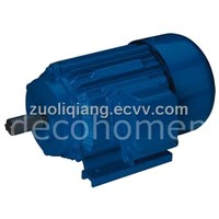Cast Iron Electric Motors (Y Series)