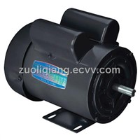 Single Phase Double Capacitors Electric Motor
