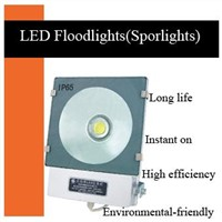 30W LED Floodlight (ZGSM-LFGD30WB)