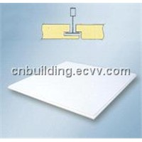Acoustic Ceiling Panel -Concealed Type