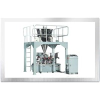 Powder Packing Machine (GDR-100)
