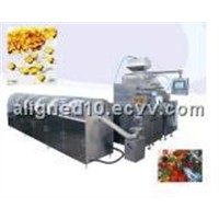 Fully Automatic Soft Gelatin Encapsulation Machine