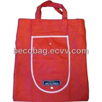 Shopping Bag (BE0907)