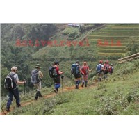 Conquer Mount Fansipan - Set Departure Available
