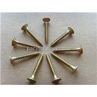 Screws (CS10)