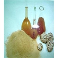Extracted Shiitake Powder (FA-003)
