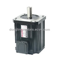 DC Electric Motor (170TYD)