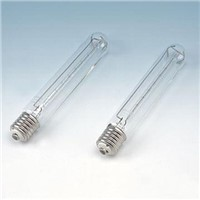 JTT Halogen Lamp