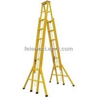 Double Sides Tensile Step Ladder