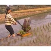 Hand-Operated Rice Transplanter
