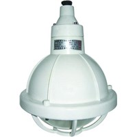 Safety Increased Explosion & Corrosion Proof Lamp