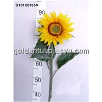 Single Sunflower