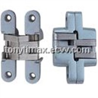 Zinc Alloy Invisible Hinge