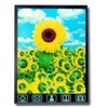 2.8-Inch Mobile Phone TFT LCD Module (YM280T-003HT)