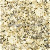 Yellow Rusty Stone Granite (G350A)
