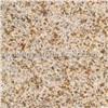 Yellow Rusty Stone Granite Slab (G350D)