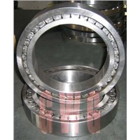 Full Completement Cylindrical Roller Bearing