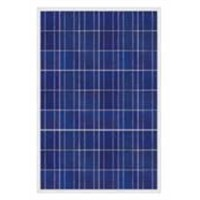 Poly-crystalline Silicone Solar Panel with Peak Power of 175W and Water-resistant Junction Box