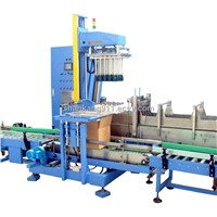 Carton Loading Machine