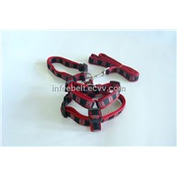 Dog harness and Leashes