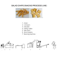 french fries process machine