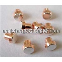 Electrical Contact Rivet (Timer Electronics and Electrical Appliance)