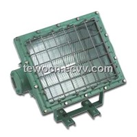 explosion-proof flood lamp(floodlight),explosion-proof floodlight