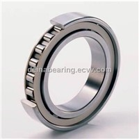 Cylindrical roller bearings SL182226