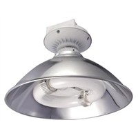 Induction Lamp for High Bay Lamps
