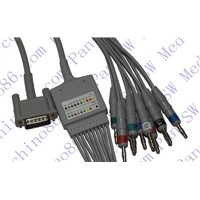 Nihon Kohden One Piece 10-Lead ECG Cable with Leadwire